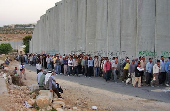 Wall in Palestine